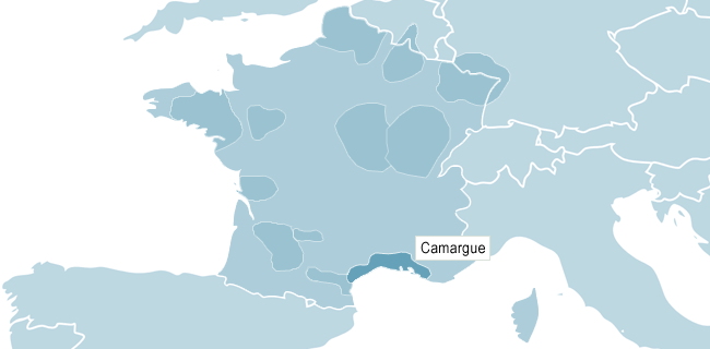 Map of Camargue
